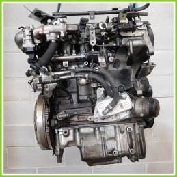 Motore Completo Usato D19AA
